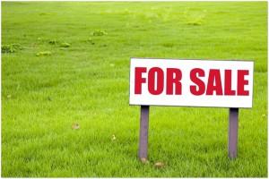 Бизнес идея: продажа земельных участков