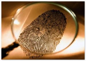 Оказание детективных услуг