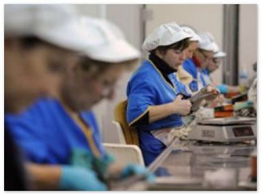 Разрыв в заработной плате рабочих и чиновников в бедных городах превысил 160%