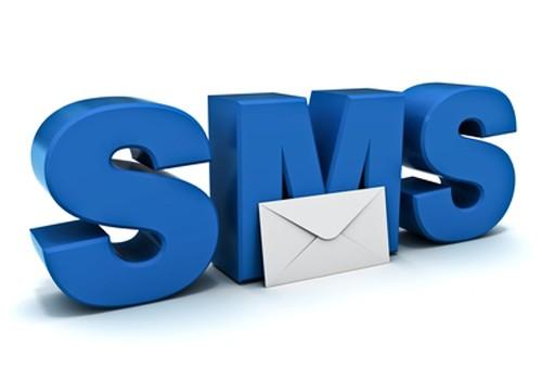 Бизнес-идея: SMS - сервис.