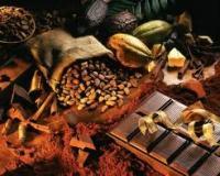 Инвестиции на завтрак — фьючерсы на кофе и какао