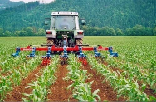 CLAAS заключил 50 договоров аренды с российскими сельхозпроизводителями