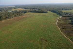 Подготовлен проект упрощенной распродажи невостребованных земельных участков