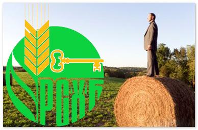 Россельхозбанк должен перестать выдавать невозвратные кредиты