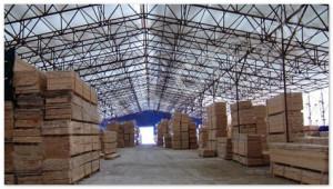 Рекордный ввод складов в России обвалил ставки аренды