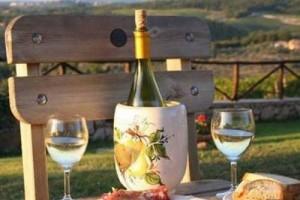 Особенности винодельческого бизнеса