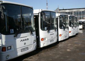 Самый популярный вид транспорта в Самаре — автобус