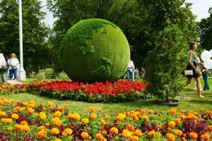 В Октябрьском районе Самары установят 182 цветущих конструкции