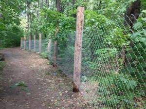 Забор в «Прибрежном» требуют убрать