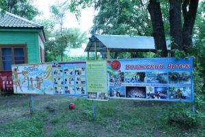Общественники Самарской области провели проверку в детских лагерях