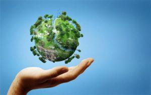 В Самаре проведут фестиваль, посвященный Году экологии