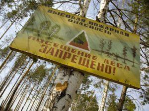 В Самарской области ожидается чрезвычайная пожароопасность лесов
