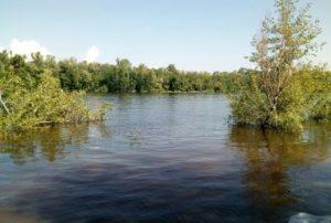 В Новокуйбышевске из зоны затопления в районе реки Криуша эвакуировали людей