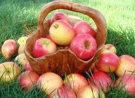 Ульяновцы празднуют яблочный спас.