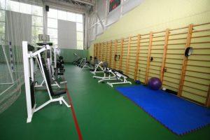 На физкультурно-оздоровительный комплекс в Тольятти выделят 483 млн рублей