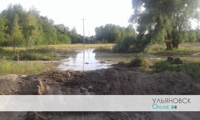 В Ульяновской области «пирожковая столица» погрязла в грязи и вони.
