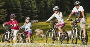 Для отдыха самарцы предпочитают покупать спорттовары и велосипеды