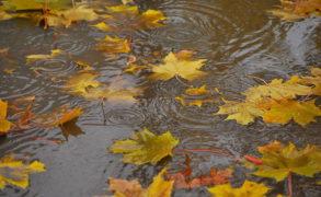 Синоптики Татарстана прогнозируют дождливые выходные