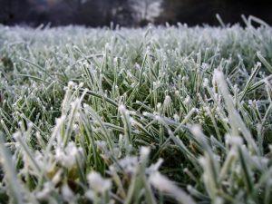 Синоптики предупреждают о заморозках в Самарской области
