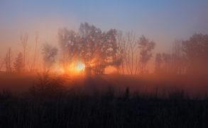Синоптики Татарстана предупредили о тумане и гололеде 29 октября