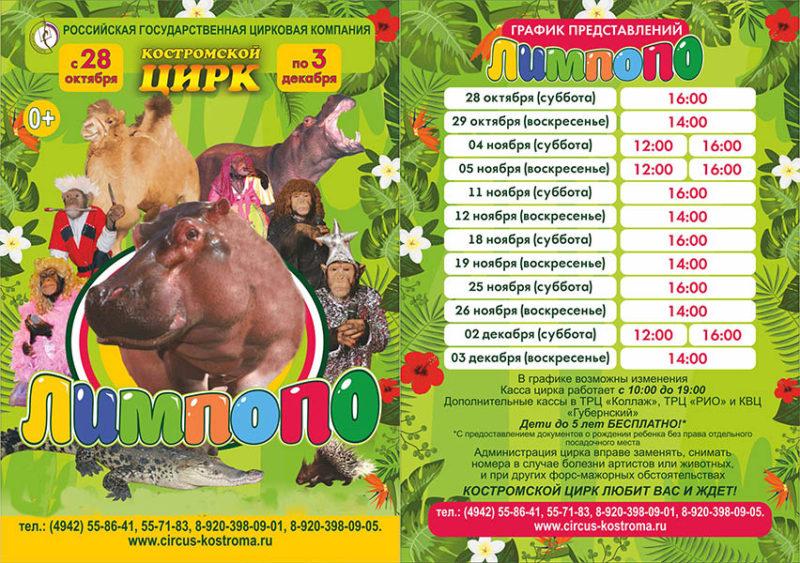 «Лимпопо»: бегемот, дикобраз и кенгуру покажут таланты на арене костромского цирка