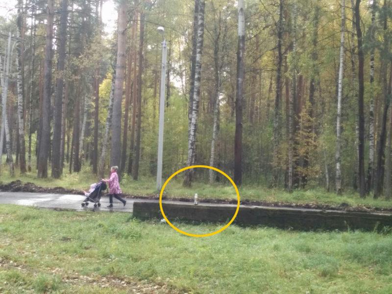 Виктору Емцу показали, где в Берендеевке поставят новое «колесо обозрения»