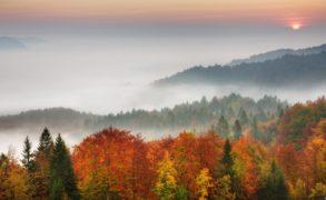О тумане и усилении ветра предупредили синоптики Татарстана
