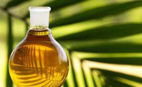 У пальмового масла может появиться ГОСТ