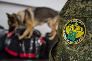 В Тольятти возбудили четыре уголовных дела занезаконное использование известных товарных знаков