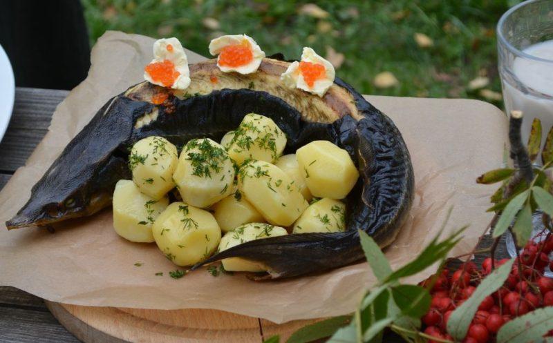 Туристам рассказывают, что любимая еда костромичей – блюда из бобра и черная икра