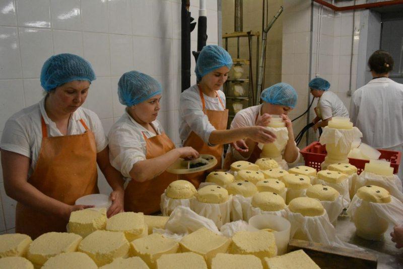 Сергей Ситников опробовал костромской сыр из Мантурова