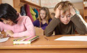 Заставят ли прокурорские проверки отменить татарский язык в школах?