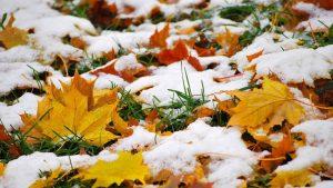 На выходных в Самарской области ожидается первый снег.