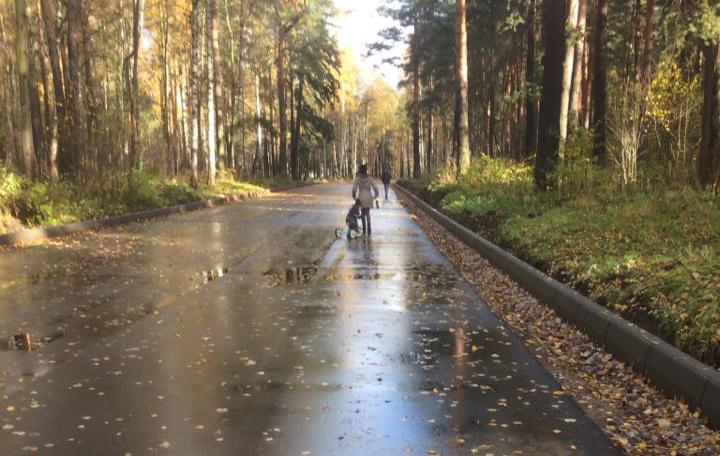 Новый асфальт в Берендеевке заставляет мам с колясками прыгать в кусты