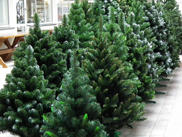 В этом году россияне выбирают более дорогие новогодние ёлки