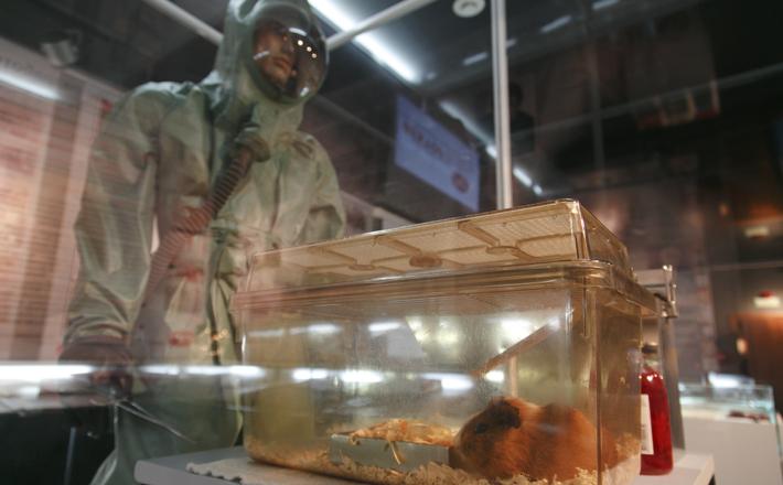 Фото вируса Эбола подарили врио губернатора в Кольцово