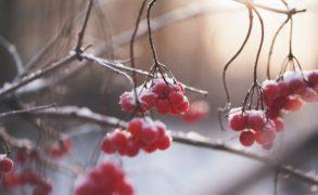 Гидрометцентр: В Татарстане ожидается похолодание и небольшой снег