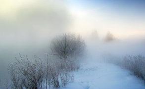 Завтра в Татарстане ожидается туман