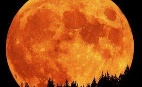 В ночь с 3 на 4 декабря будет наблюдаться суперлуние