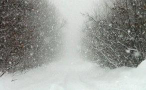 В Татарстане ожидаются метель и туман