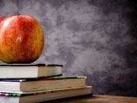 Без образования не разобраться